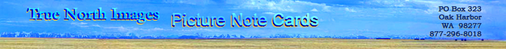 True North Images Picture Note Cards banner